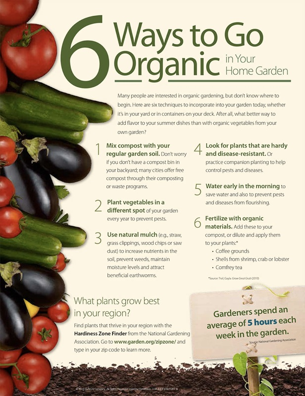 6-ways-to-go-organic-in-garden